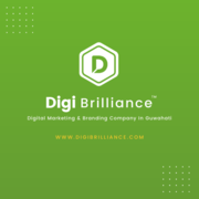 Digi Brilliance Digital Marketing and Branding Company.